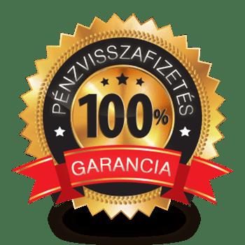 Google AdWords kampánykezelés - 100% garancia